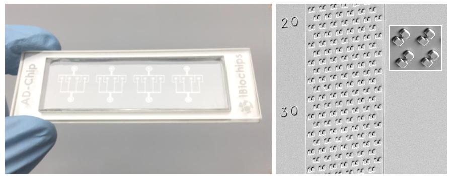 シングルセル捕集・培養チップ AD-Chip