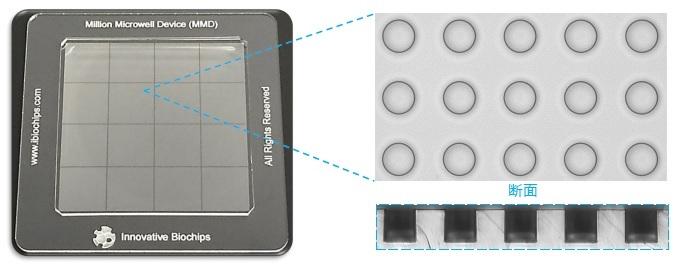 シングルセル単離 マイクロウェルプレート MMD